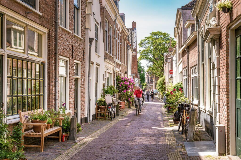 Vegan Haarlem