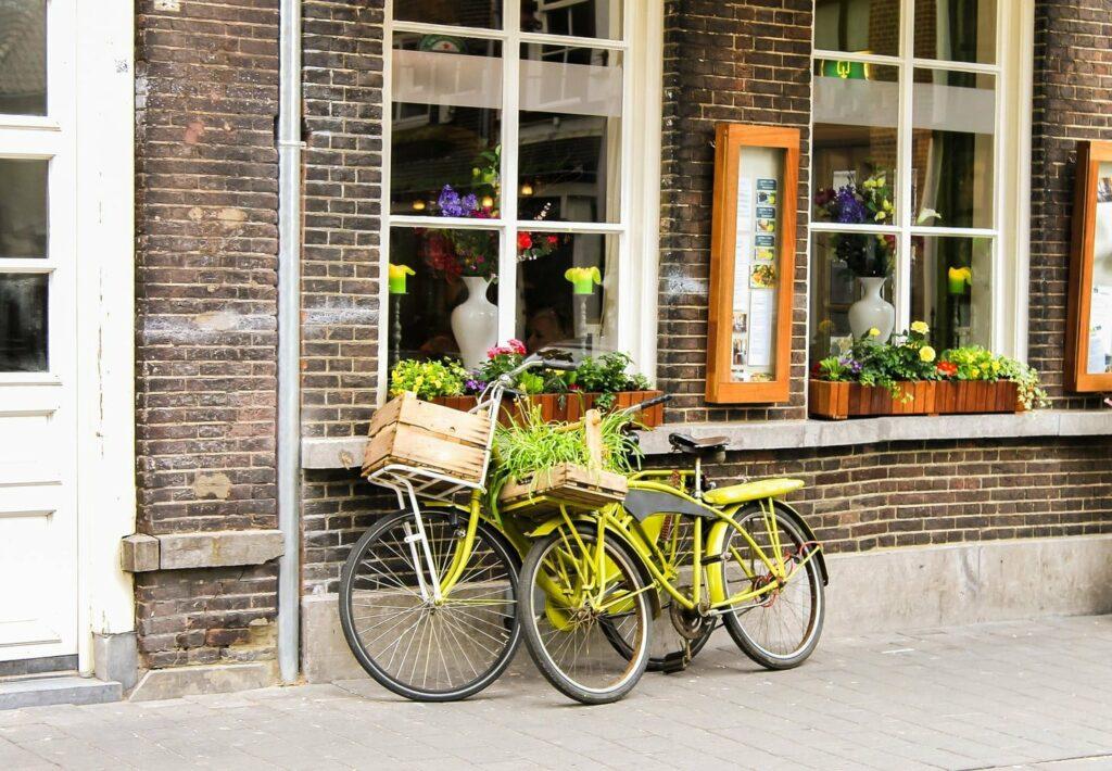 vegan in Den Bosch