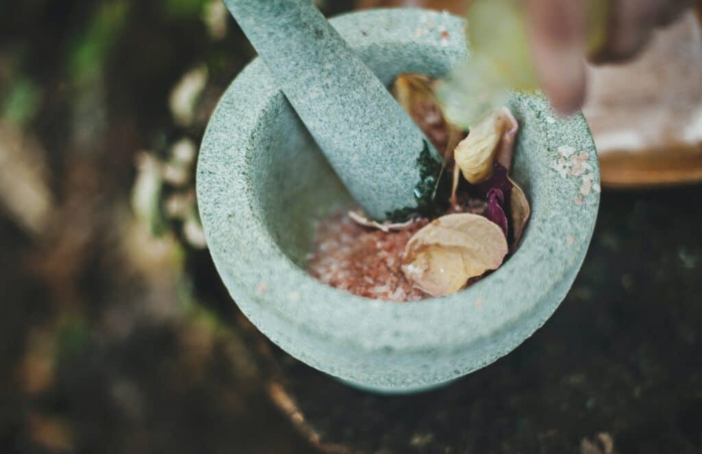 plantaardig eten vijzel
