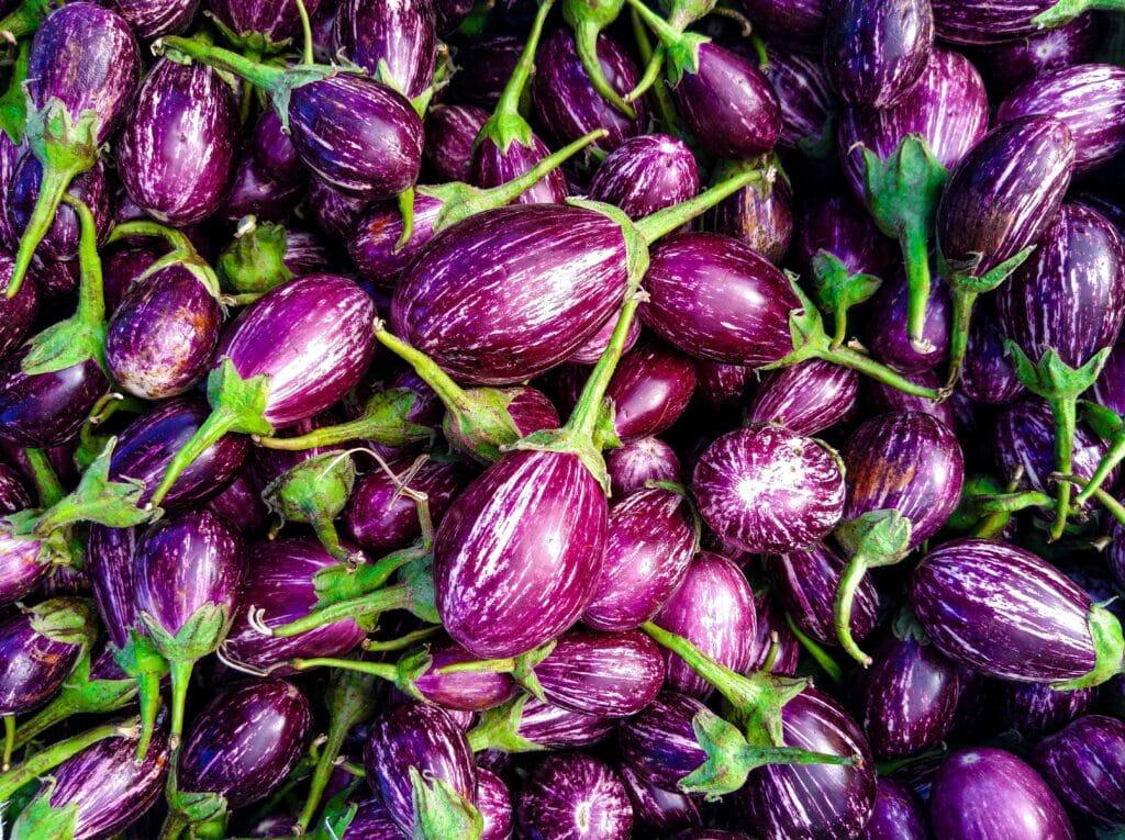 Artikel alles over aubergine
