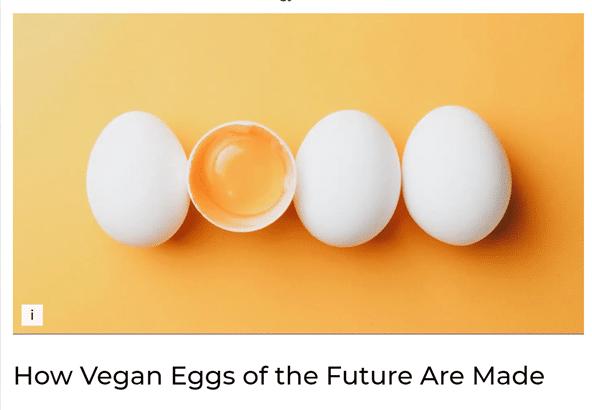 Vegan in het nieuws - toekomst van vegan eieren