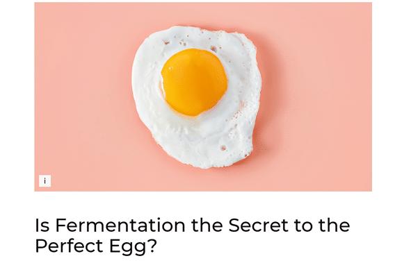 Vegan in het nieuws - nieuwe technieken om vegan eieren te maken